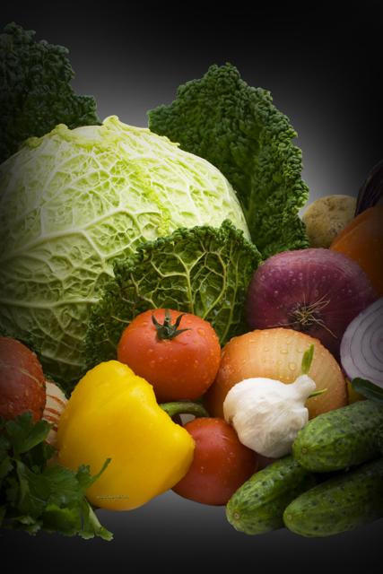 основы правильного питания скачать