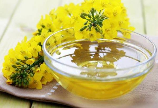 рапсовое-масло-полезные-свойства