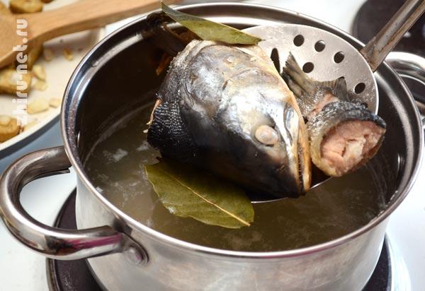 вынуть-рыбу